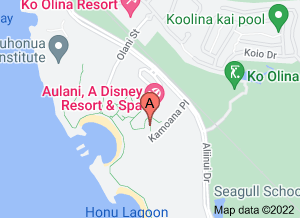 Aulani: Disney Resort