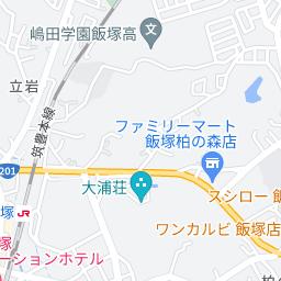 アートハーバー 九州 白いむくげ